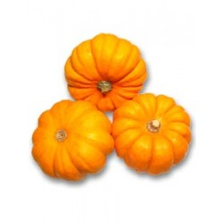 Courge jack be little (500g)