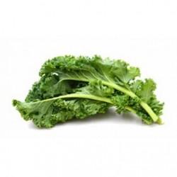 Chou kale vert (botte)