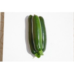 Courgette (500g)